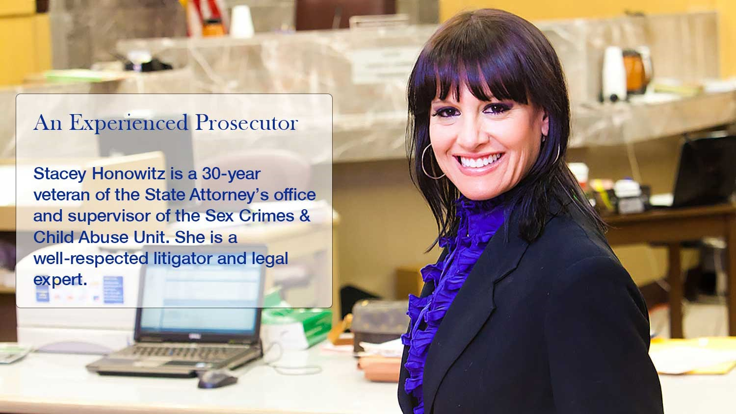 Stacey Honowitz, State Prosecutor